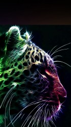 Color Leopard Galaxy S5 Wallpaper