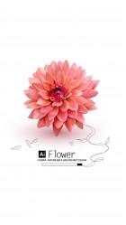 AI FLOWER HD Wallpaper iPhone 6 plus