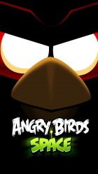 Funny Angry Birds Space HD Wallpaper iPhone 6 plus