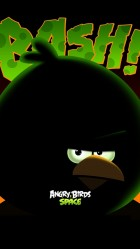 iPhone 6 plus Angry Birds 13 HD Wallpaper