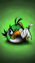 iPhone 6 plus Angry Birds 18 HD Wallpaper