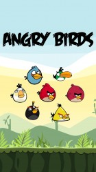 iPhone 6 plus Angry irds 01 Games wallpaper